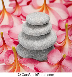 Pebble stack and Flowers