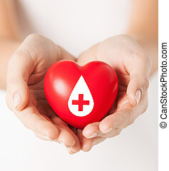 female hands holding red heart with donor sign - healthcare,...