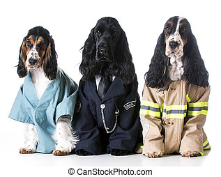 first responders - english cocker spaniels dressed up like a...