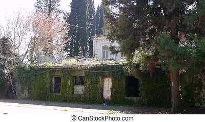Abandoned Building in Garden 1 - Abandoned Building in...