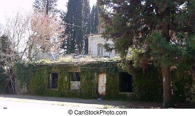 Abandoned Building in Garden 1