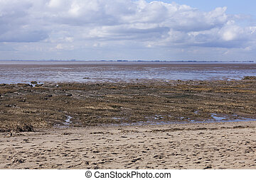 Mud flats at low tide, Spurn Point Nature Reserve,...