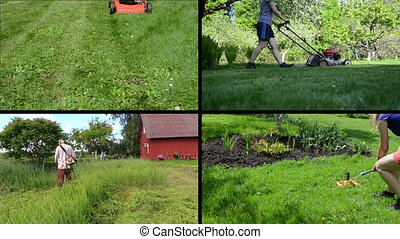 mowing lawn collage - Gardener woman mow and watering lawn...