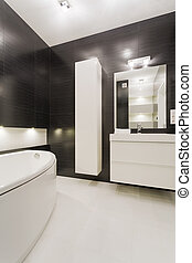 Black and white bathroom in modern design