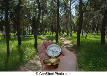 Choosing path - Compass being held out to determine...