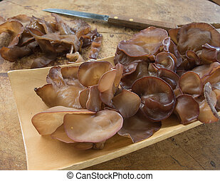 Auricularia, /Jew's, Ear, /, Tree, Ears, /, mushroom