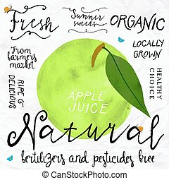 watercolor apple - Vector illustration of green apple in...