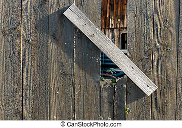 retoño, y, viejo, de madera, cerca,