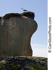 Storks and stones Natural Park of Barruecos, Spain - Storks...
