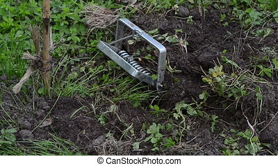 garden worker mole trap - Gardener worker hand take out...