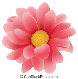 red daisy flower - illustration drawing of red daisy flower...