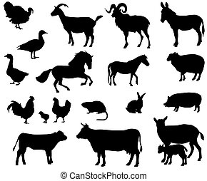 Farm animals - Collection of silhouettes of domestic animals...