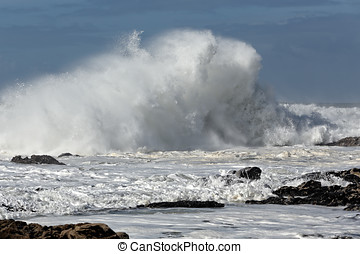 Sunny rough sea - Big breaking wave in a sunny noon....