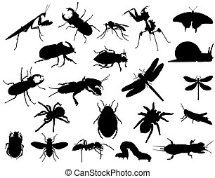 insects - Collection of silhouettes of different species of...