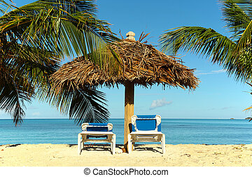 tropical beach holiday destination picture - tropical beach...
