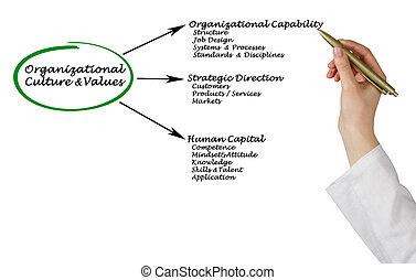 Diagram of Organizational Culture&Values