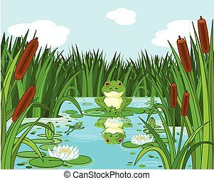 Frog on the lily - Illustration of a pond scene with frog...