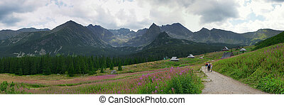 Panorama of the Tatras - Panorama of the beatiful Polish...