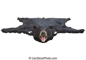 Low angle view of a bearskin rug isolated on white - A low...
