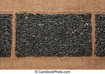 Sunflower seeds on sackcloth, with place for your text