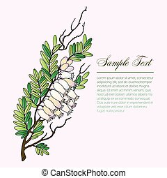 bearberry twig with flowers vector illustration with text...