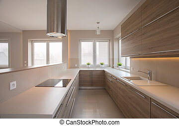 Wooden cupboards in beige kitchen in traditional style