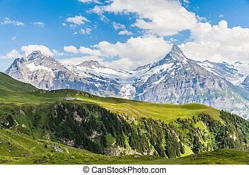 schreckhorn, svizzero, alpi, vista