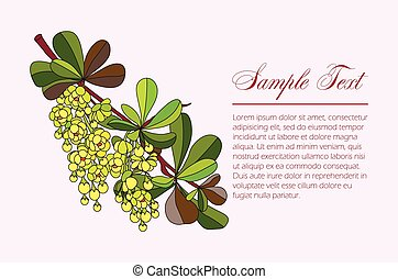 Barberry branch with flowers and leaves. vector illustration...