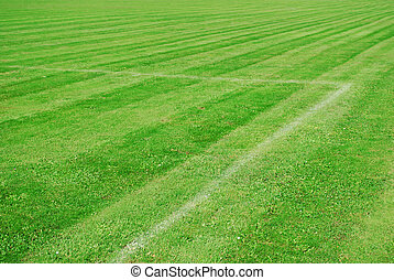green football pitch with white lines and a parallel pattern