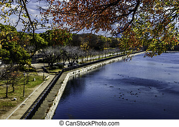 Overhanging colorful leaves with Osaka Castle Parkland in...