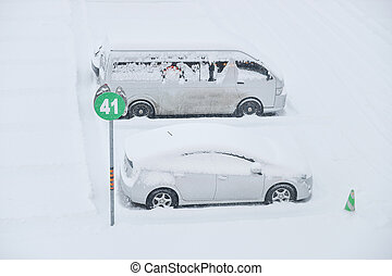 Cars under the snow - Cars under the snow