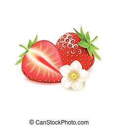 Strawberry and slice isolated on white vector - Strawberry...