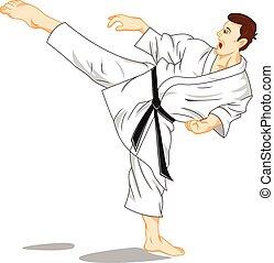 master of karate martial art - vector illustration of master...