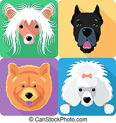 Set dog head icon flat design - Vector dog Poodle,...