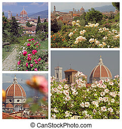 Garden of Roses Giardino delle rose images collage, Florence...