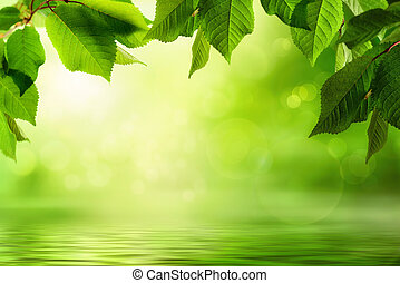 Greenery and water background