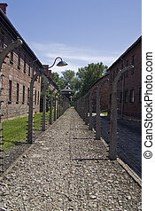 Wire fence in Auschwitz concentration camp