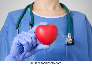 Heart in surgeon's hand - Red heart in the hand of a doctor