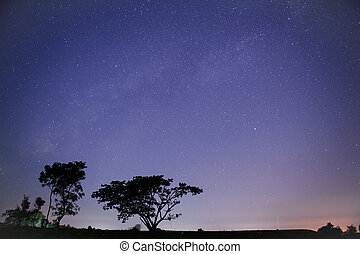 Star Trails and Milky Way