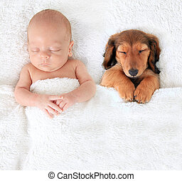 Newborn baby and puppy - Sleeping newborn baby alongside a...
