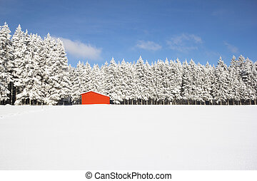 Red barn in snow landscape (wide-angle shot)
