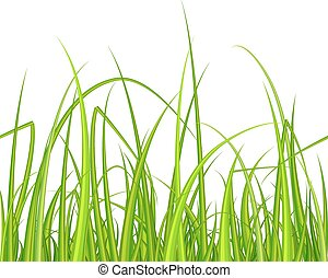 Green grass. Seamless pattern.