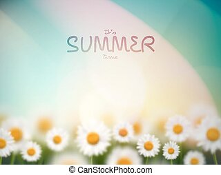 It's Summer Time