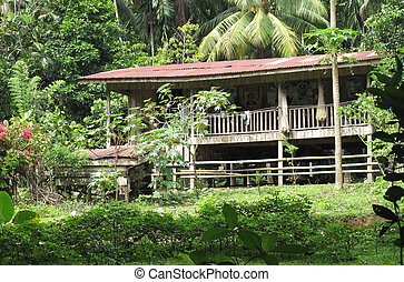 Malaysian House - A nice typical design Malaysian country...