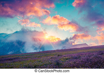 Colorful summer cloudscape in the foggy Val di Fassa valley...