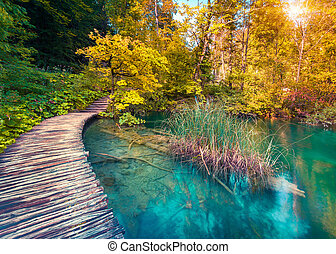 Colorful autumn sunrise in the Plitvice Lakes National Park...