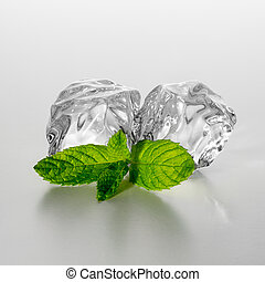 two ice cubes with mint