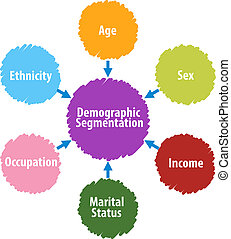Demographic segmentation business diagram illustration