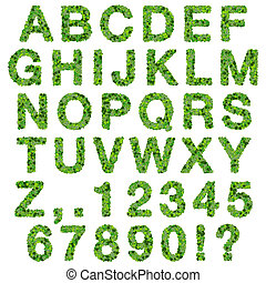 Alphabet with numbers - leaves - Beautiful graphics made...