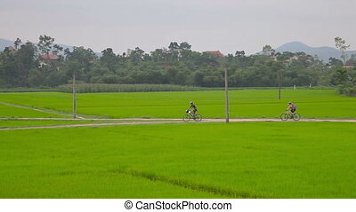 Cycling in countryside - Cycling in Phong Nha Ke Bang